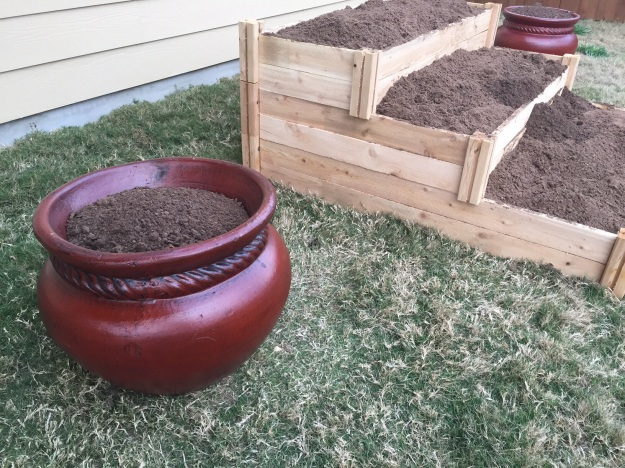 Found a couple pots to go next to the flower bed.