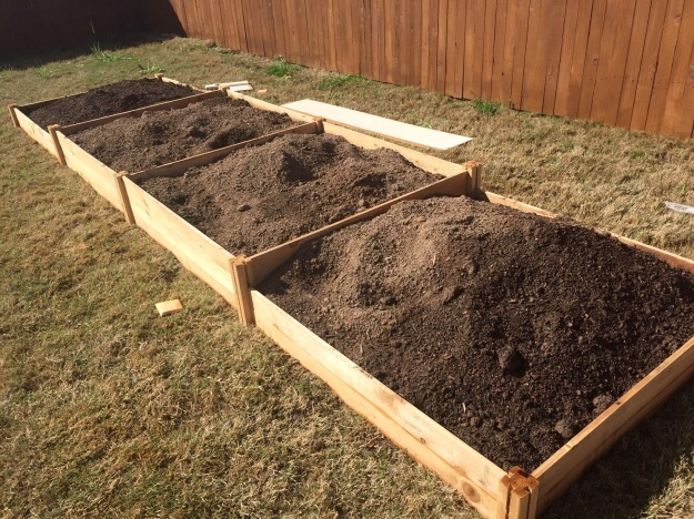 The 4-foot-by-16-foot bed full of dirt.
