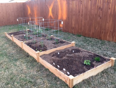 Another view of the raised bed from the other side.