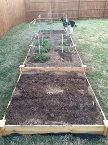 I finally screwed in the little square corners on the raised bed tonight.