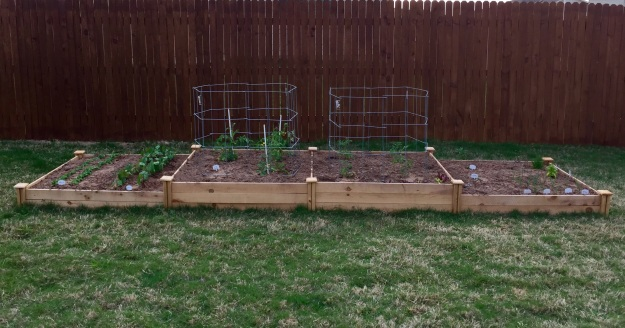 The vegetable garden looking west.